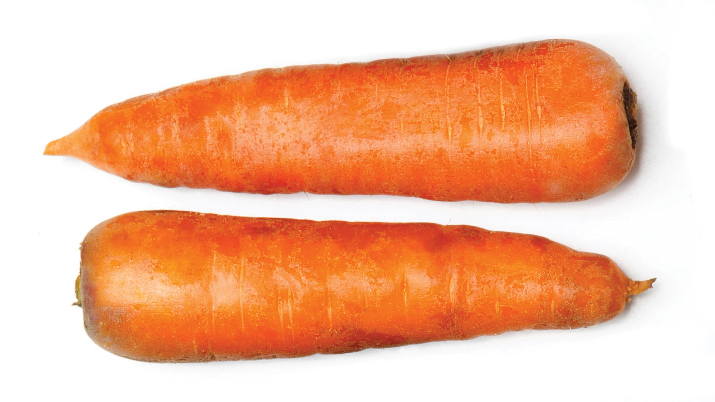 Two carrots on white background